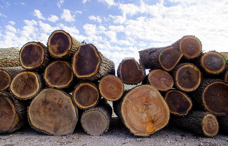 土井木工が提供する最も心地よいソファー